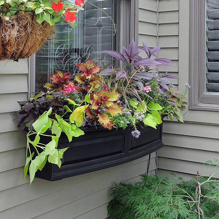 Window Box Planter Ideas: Nantucket Window Box