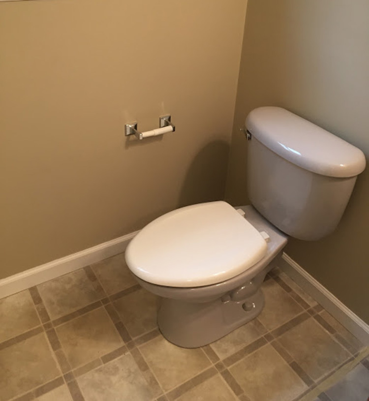 Old purple toilet before renovation.