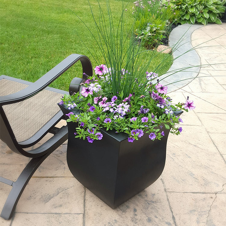 Add fullness to your potted garden arrangement with filler plants.