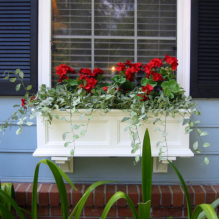 Soften and unify your arrangement with spiller plants.