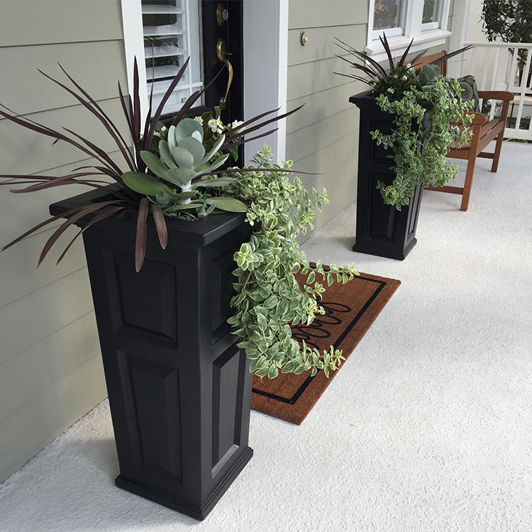 Following the recipe of using thrillers, fillers, and spillers when designing your container garden will make creating beautiful arrangements as easy as 1-2-3.